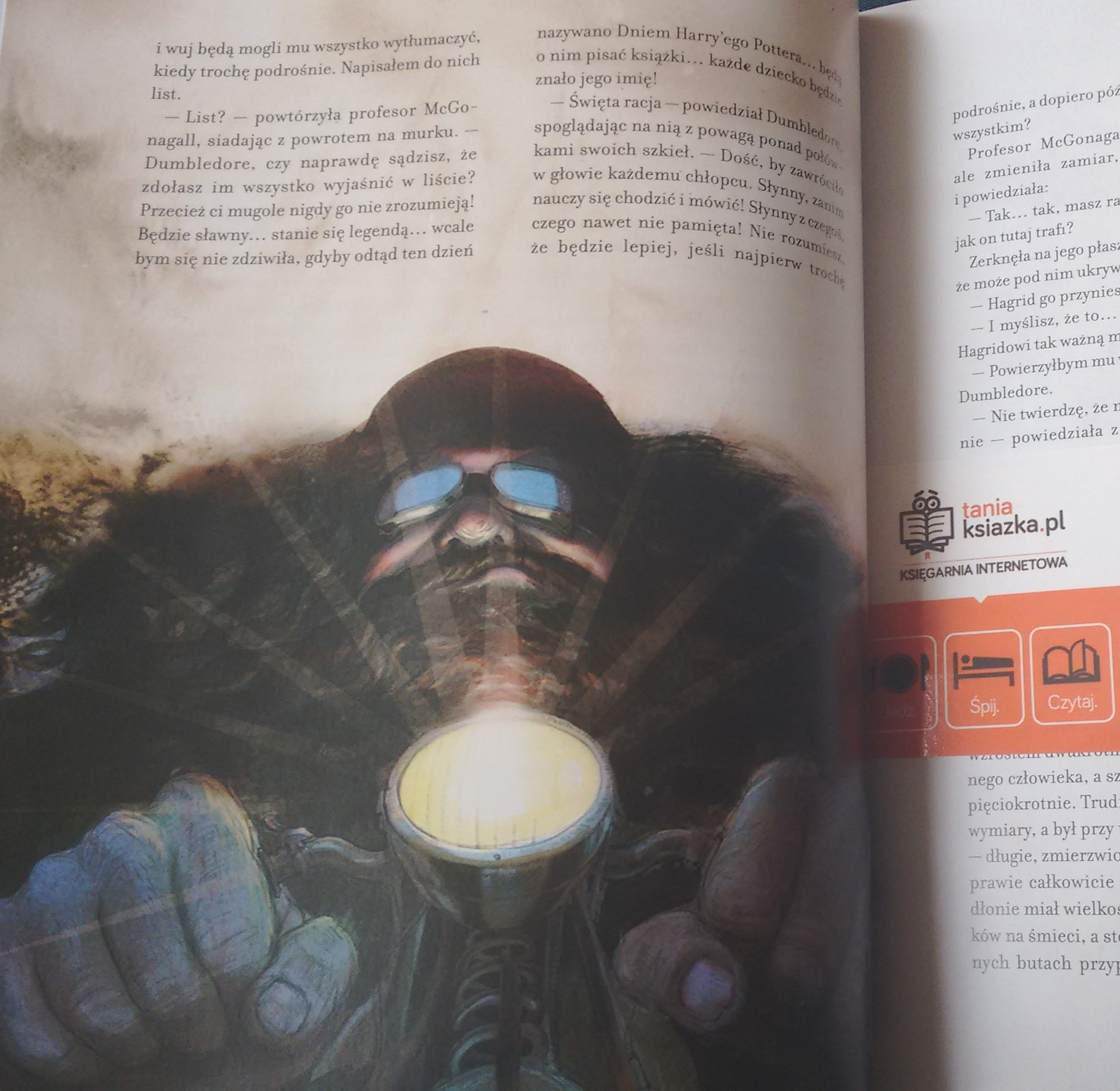 Harry Potter wydanie ilustrowane 3