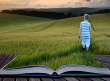 Book concept Landscape young boy walking through crop field at sunset