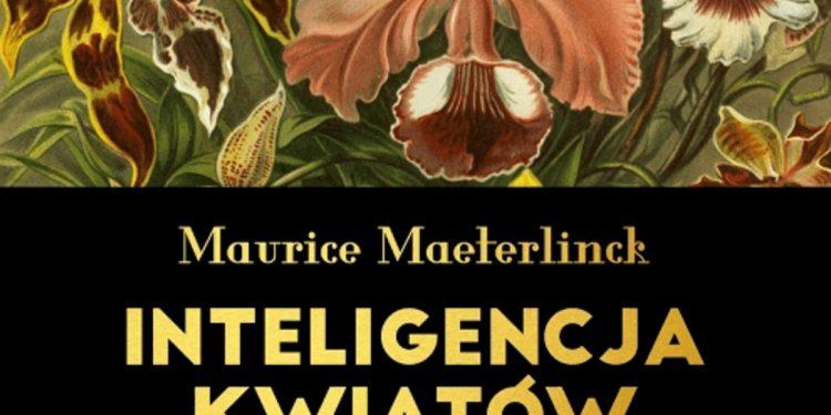 Inteligencja kwiatów - sprawdź na TaniaKsiazka.pl
