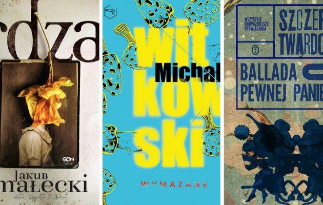 Nowości 2017 od polskich autorów