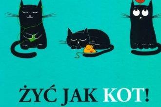 Żyć jak kot - zobacz na TaniaKsiazka.pl