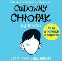 Audiobook Cudowny chłopak mp3 - kup na TaniaKsiazka.pl