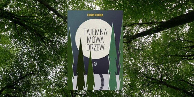 Recenzja książki Tajemna mowa drzew