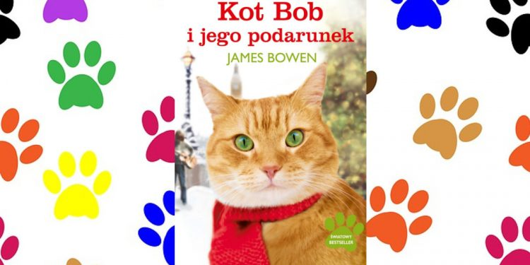 Kot Bob i ja - kup na TaniaKsiazka.pl