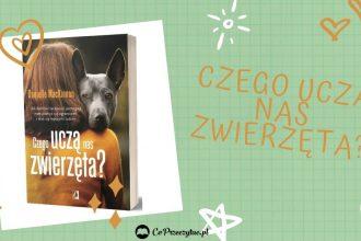 Czego uczą nas zwierzęta - kup na TaniaKsiazka.pl