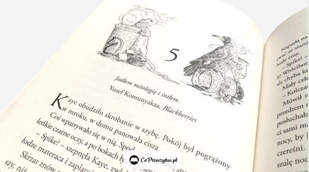 Zła królowa - książkę Holly Black znajdziesz na TaniaKsiazka.pl