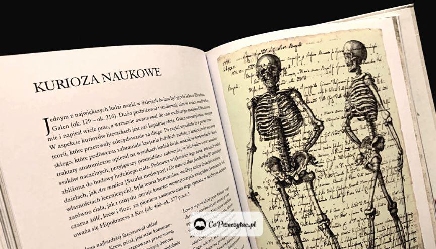 Biblioteka szaleńca. Książki szukaj na TaniaKsiazka.pl
