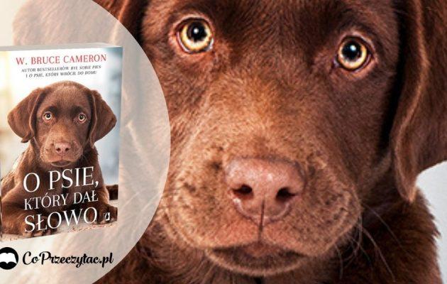 O psie, który dał słowo - nowa książka Camerona O psie który dał słowo