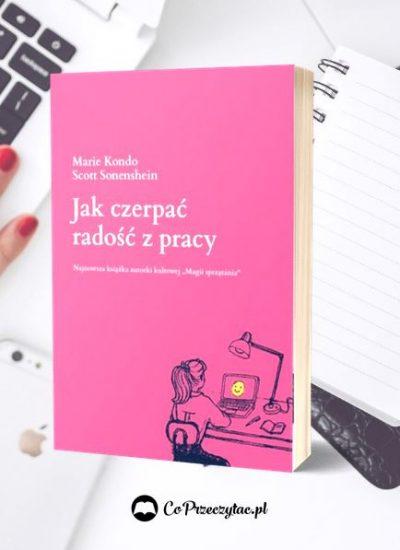 Recenzja książkiJak czerpać radość z pracy