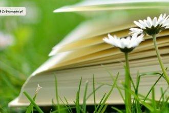 5 lekkich lektur na majówkę. Co przeczytać w długi weekend?