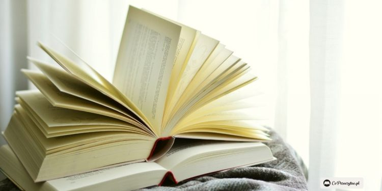 Narodowy Program Rozwoju Czytelnictwa 2.0 - garść najważniejszych informacji