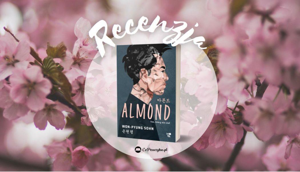 Almond recenzja książki – tytułu szukaj na TaniaKsiazka.pl